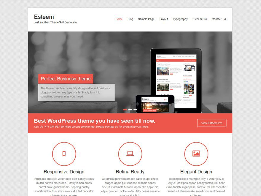 Esteem WordPress Business Theme