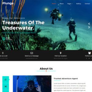Plunge Sport Website Template