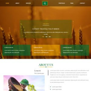 Grains Free Responsive Website Template