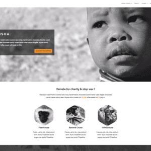 Maisha Lite WordPress Charity Theme