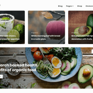 Free Bayleaf WordPress Theme