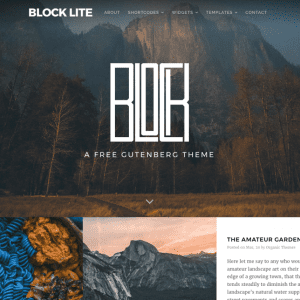 Free Block Lite WordPress Theme