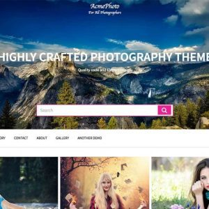 Free AcmePhoto WordPress Theme