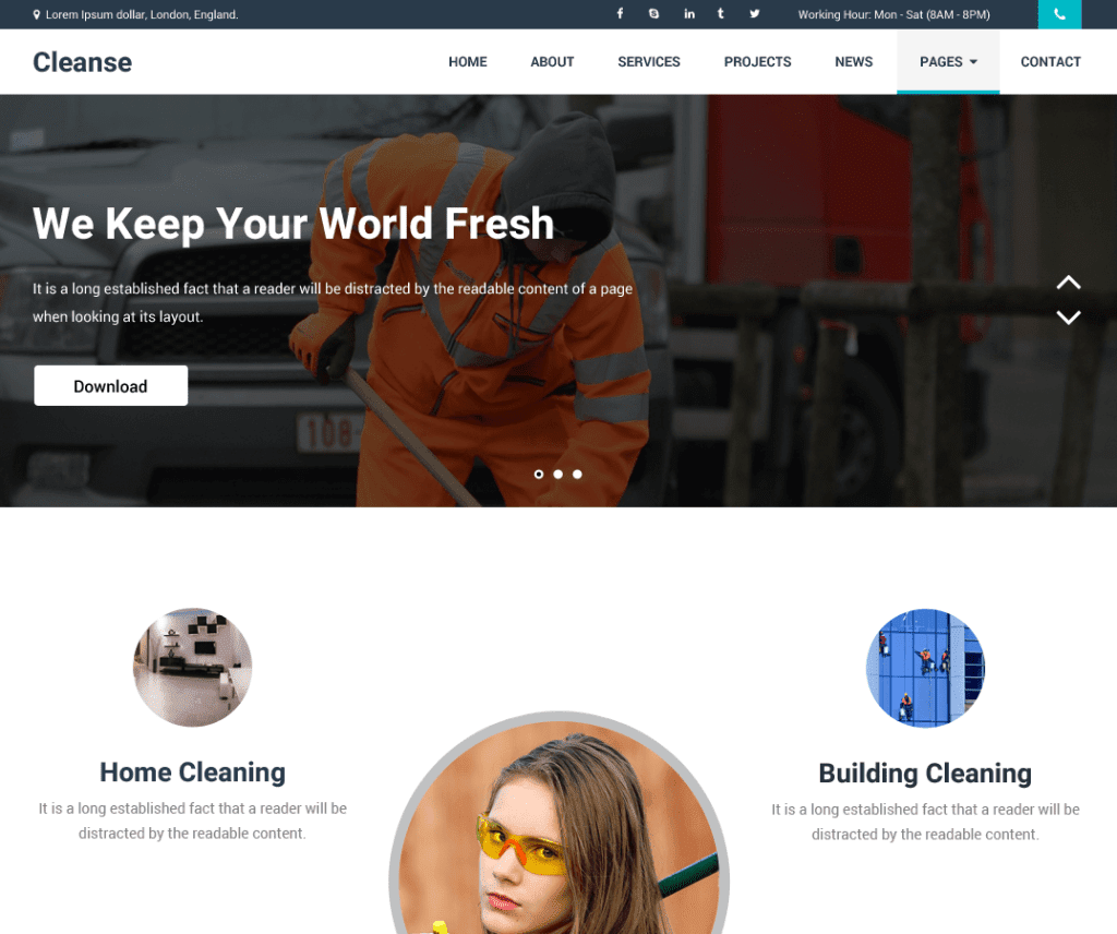 Free Cleanse WordPress Theme