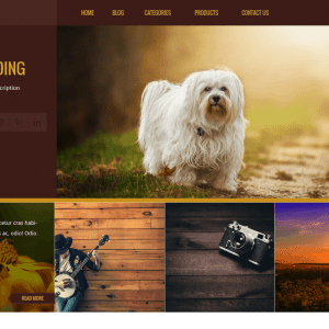 Free Kurama WordPress Theme
