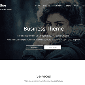 Free NovelBlue WordPress Theme