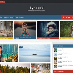 Free Synapse WordPress Theme