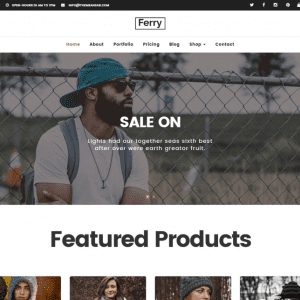 Free ferry WordPress Theme