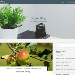 Free Super Blog WordPress Theme
