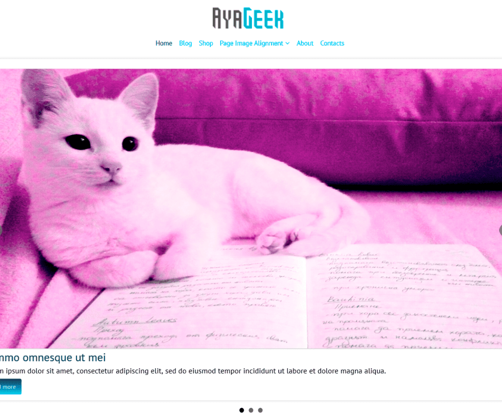 Free AyaGeek WordPress Theme