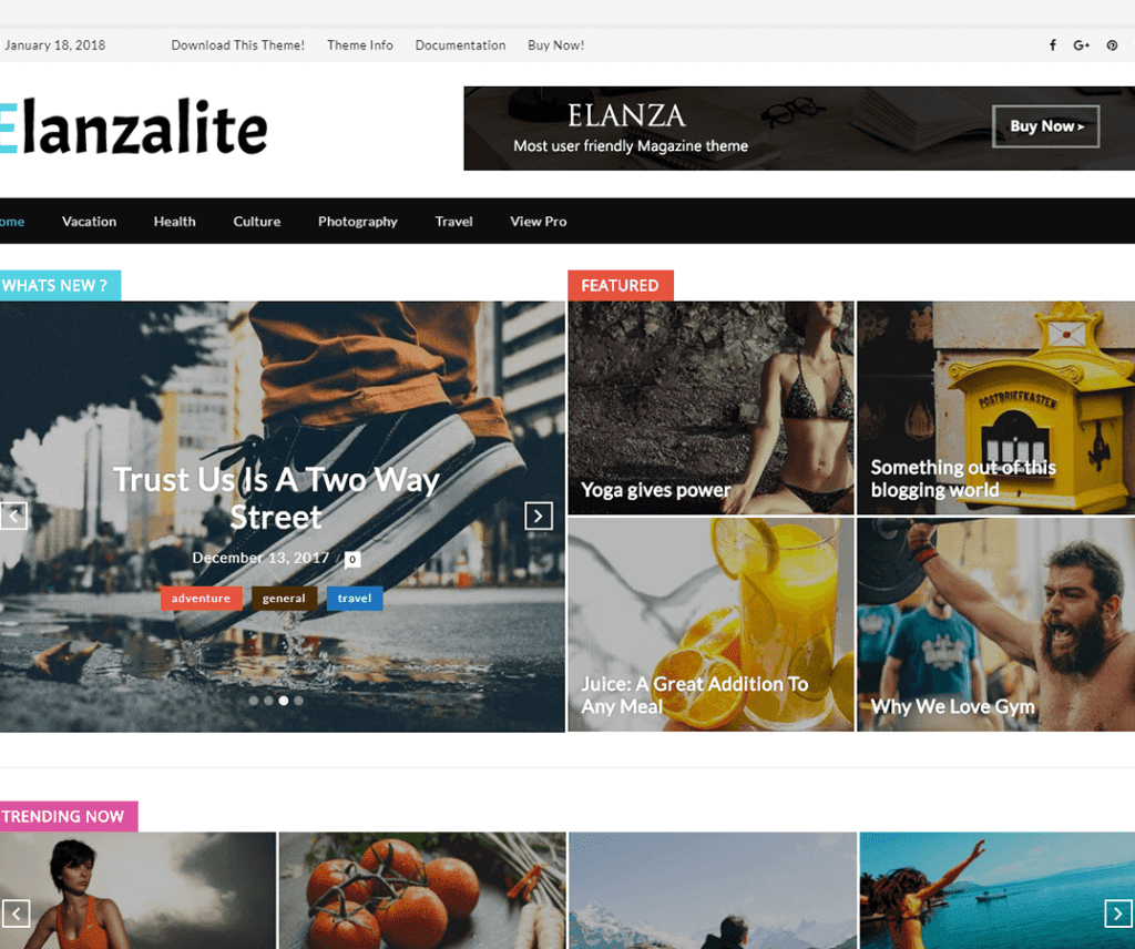 Free ElanzaLite WordPress Theme