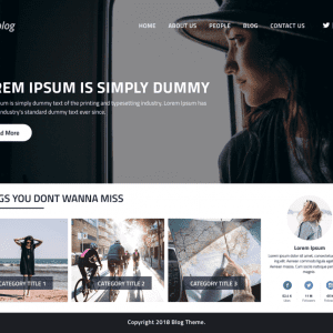 Free Perfect Blog WordPress Theme